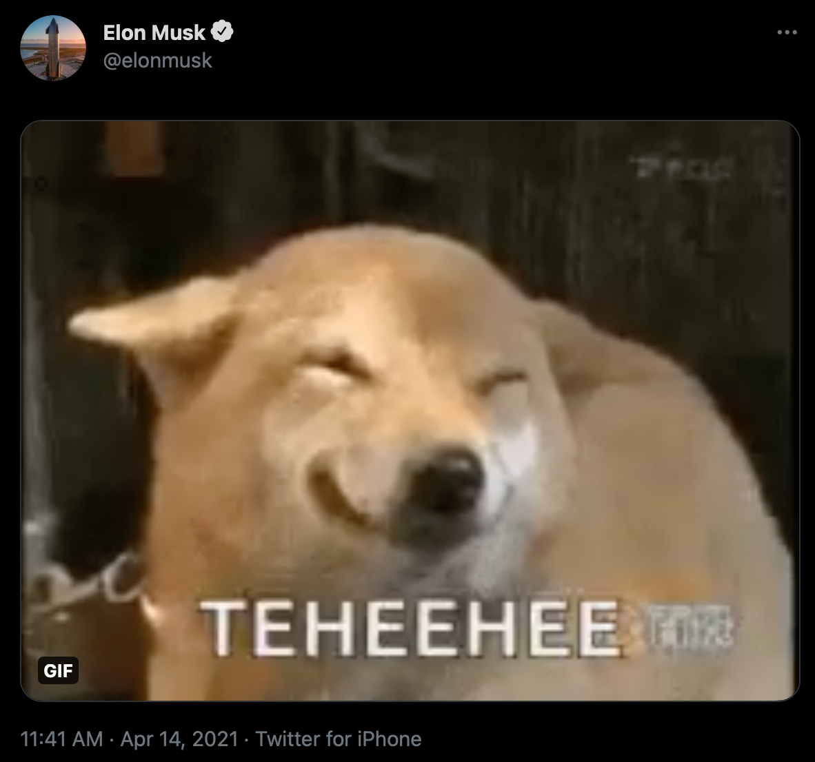 Elon Musk's Dogecoin Tweet